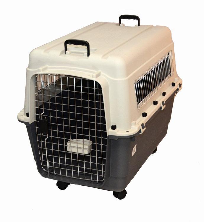 tectake Cage Box Caisse de Transport pour Chien Mo...